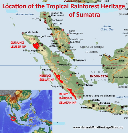 Map showing the location of Tropical Rainforest Heritage of Sumatra world heritage site in Indonesia