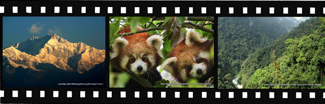 Images for Khangchendzonga National Park World Heritage Site in India