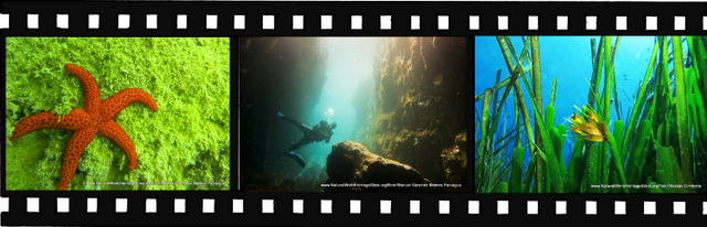 Images for Ibiza Biodiversity and Culture World Heritage Site in Spain