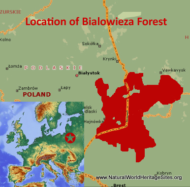 Map showing the location of Bialowieza Forest World Heritage Site in Belarus and Poland