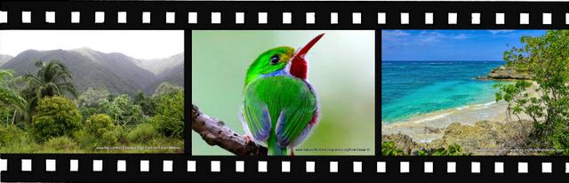 Images for Alejandro de Humboldt National Park World Heritage Site in Cuba