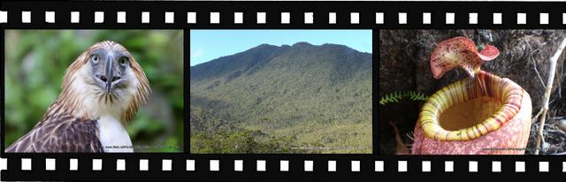 Images for Mount Hamiguitan Range Wildlife Sanctuary World Heritage Site in Philippines