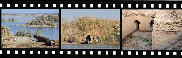 Images for The Ahwar of Southern Iraq World Heritage Site in Iraq